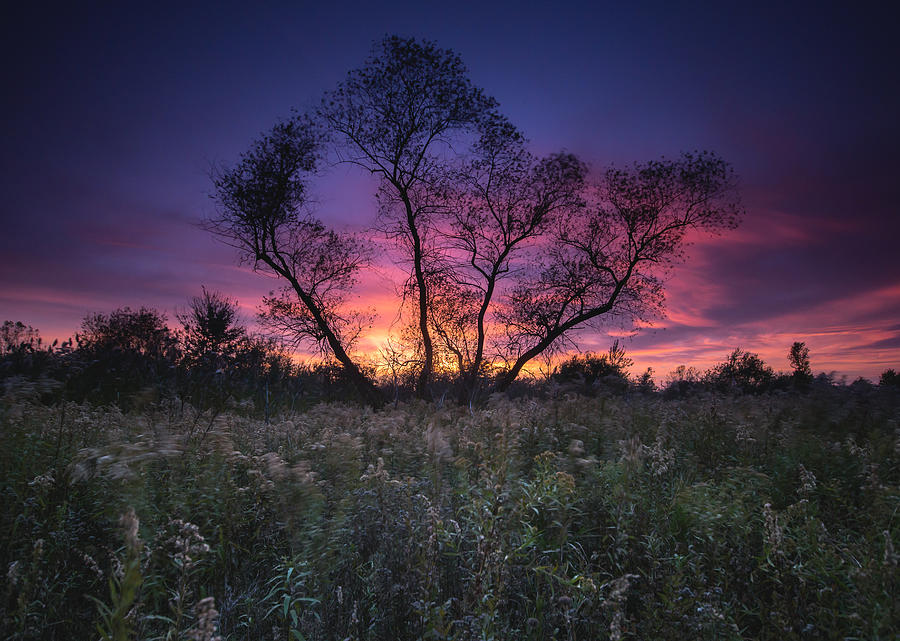 Landscape Photograph - Ojibway Sunset by Cale Best