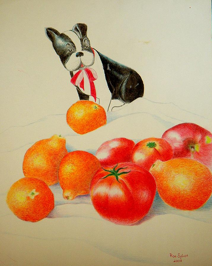Boston Terrier Painting - Ok Which One Is The Cutest by Ron Sylvia