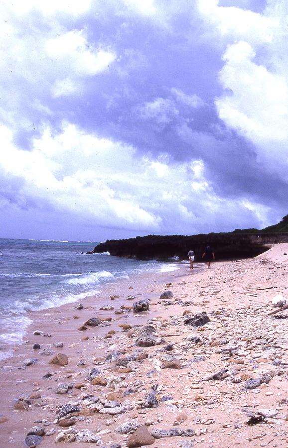 Okinawa Photograph - Okinawa Beach 15 by Curtis J Neeley Jr