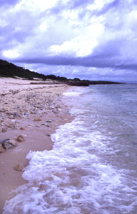 Okinawa Photograph - Okinawa Beach 17 by Curtis J Neeley Jr
