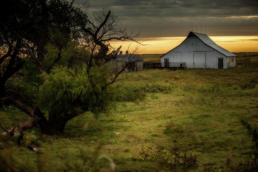 Oklahoma Barnyard by Jonas Wingfield