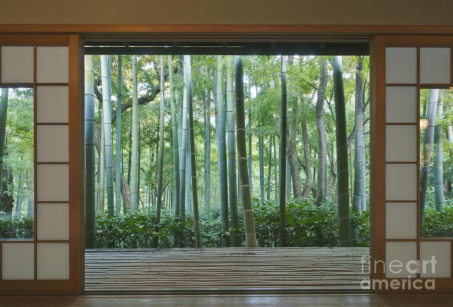 Mood Photograph - Okochi Sanso Villa Bamboo Garden by Rob Tilley