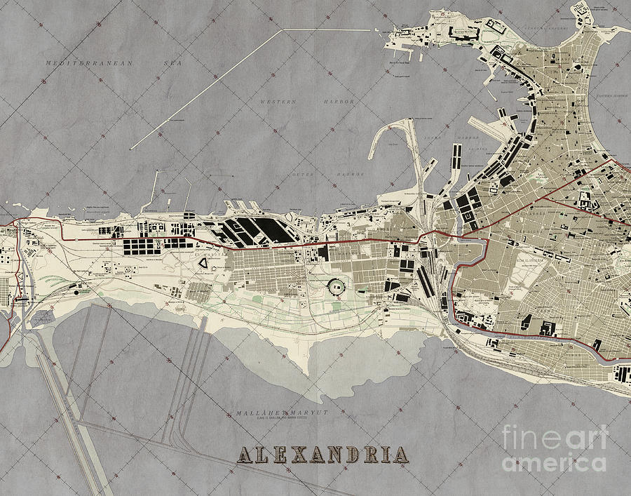 map photograph old antique city map alexandria egypt by elite image photography by chad mcdermott