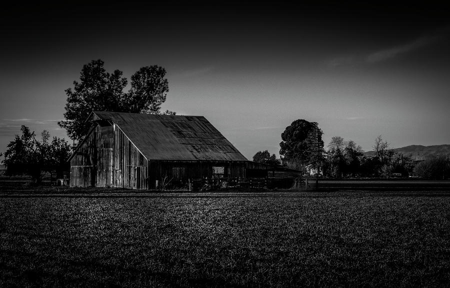 Old Barn 12 by Bruce Bottomley