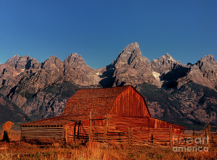old barn grand tetons national park wyoming by Dave Welling