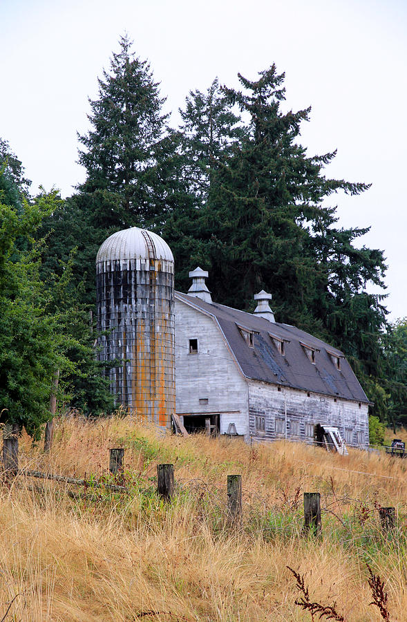 Barn Photograph - Old Barn In Field by Athena Mckinzie