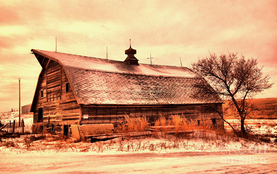 Old Barn In The Winter Photograph