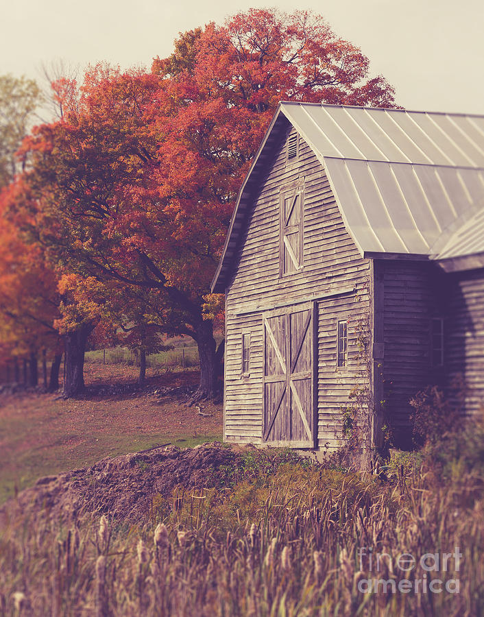 Farm Photograph - Old Barn In Vermont by Edward Fielding