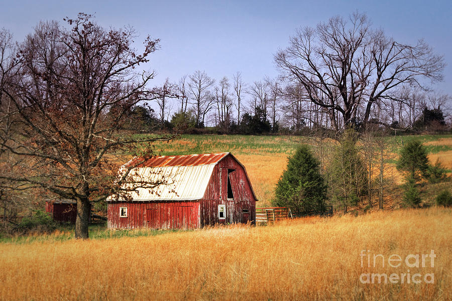 Red Photograph - Old Barn by Tamyra Ayles