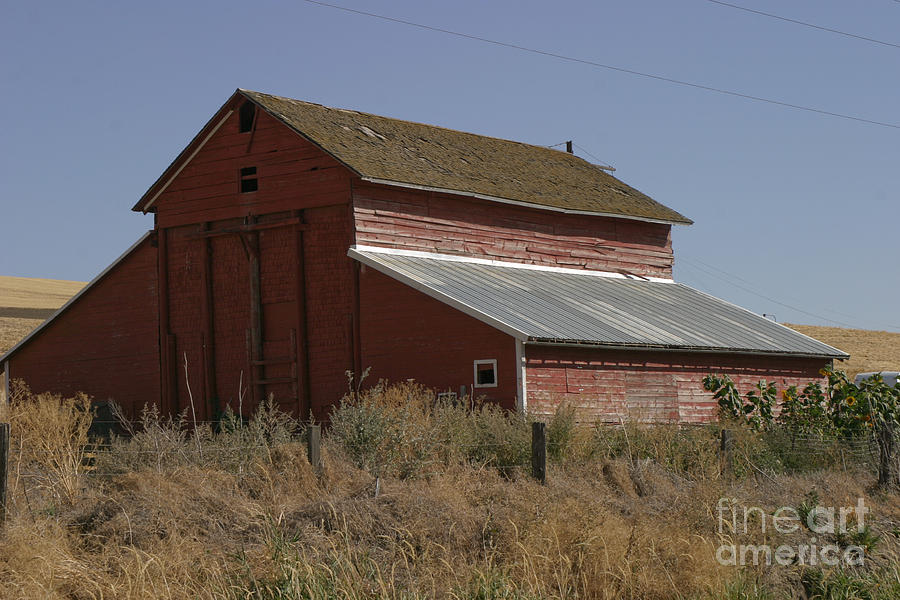 Old Photograph - Old Barn by Robert  Torkomian