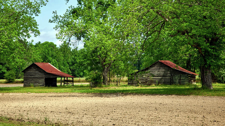Monroe County Photograph - Old Barns In The Woods by Mountain Dreams