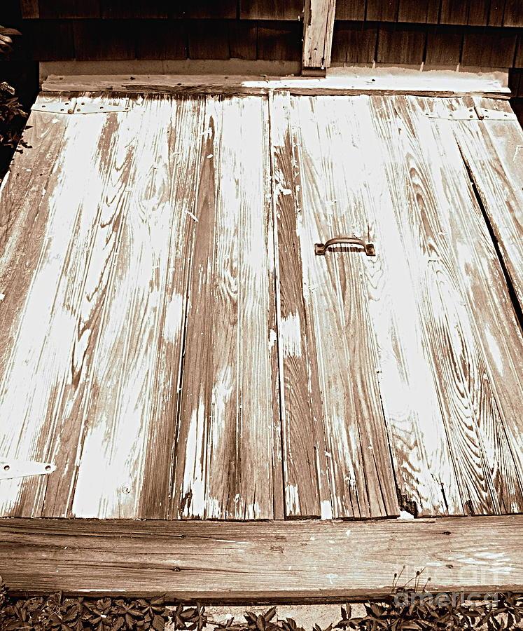 Doors Photograph - Old Basement Doors by Colleen Kammerer