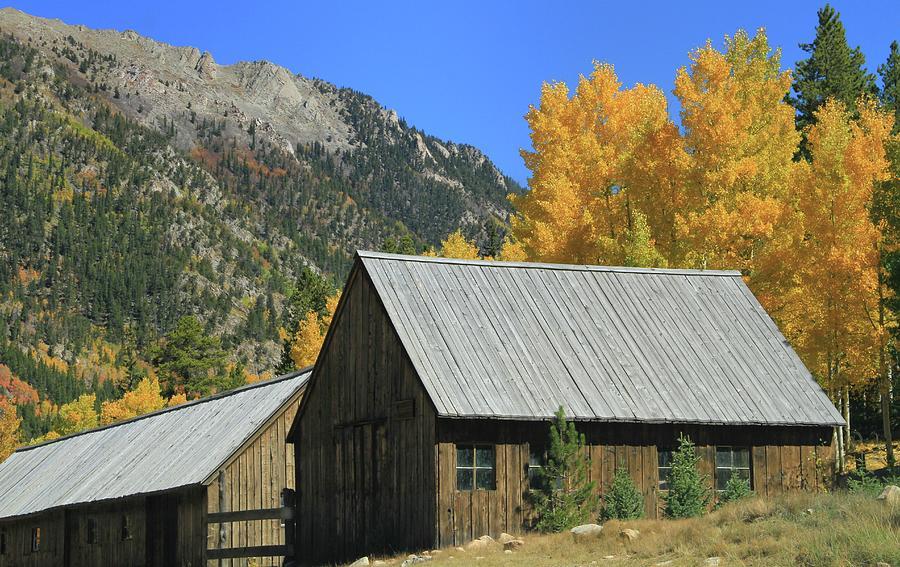 Old Cabin In St Elmo Colorado Photograph