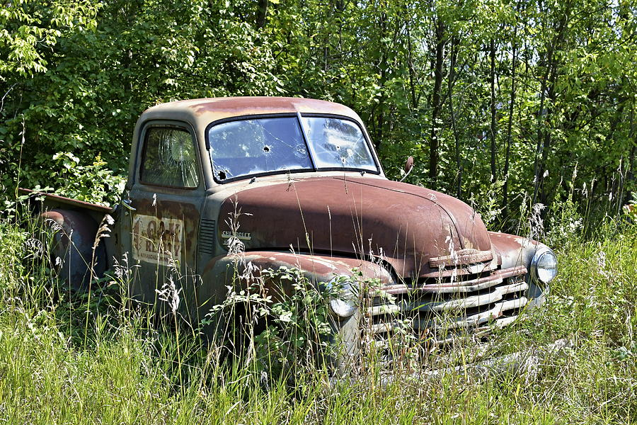 Old Cheverolet pickup truck sitting in a field by Steven Liveoak