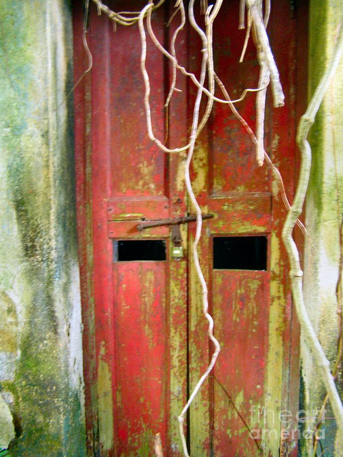 Door Photograph - Old Chinese Village Door Eleven by Kathy Daxon