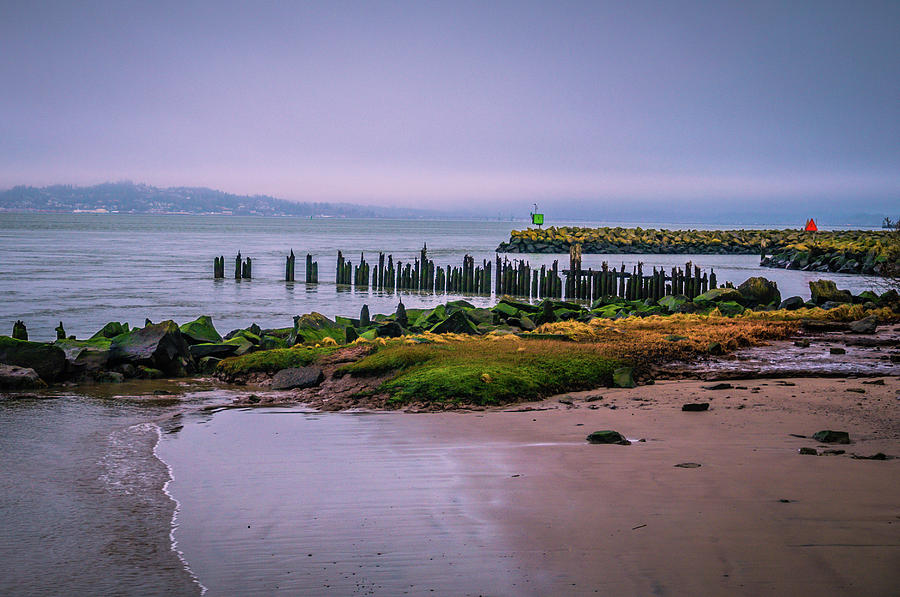 Old Columbia River Docks by Bryan Carter