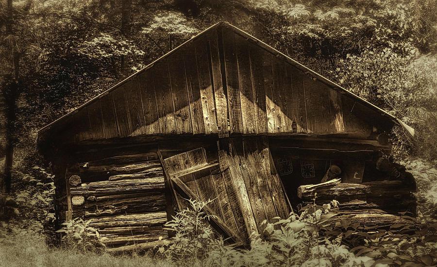 Old Days Gone By by ELAINE MALOTT