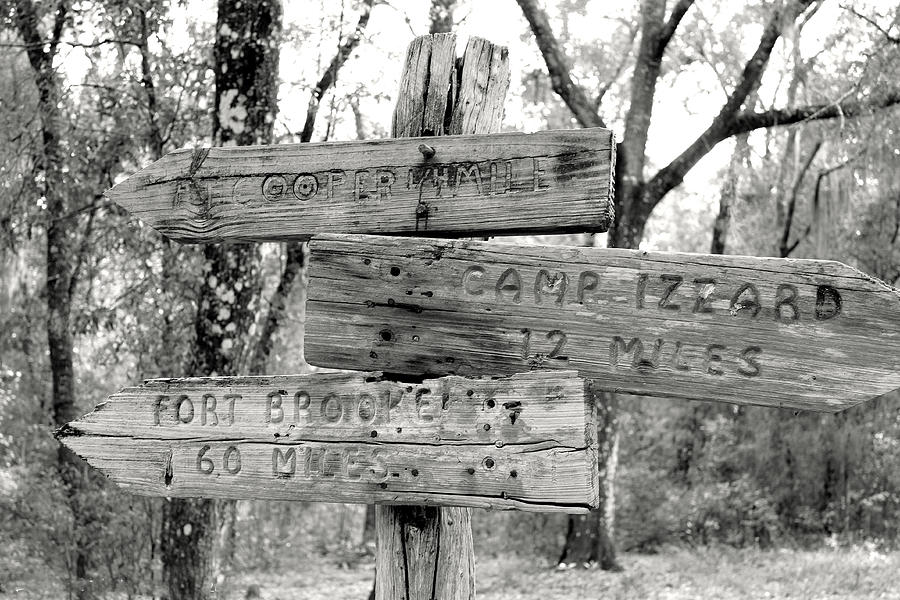 Florida Photograph - Old Directional Signs At Fort Cooper  by Debra Forand