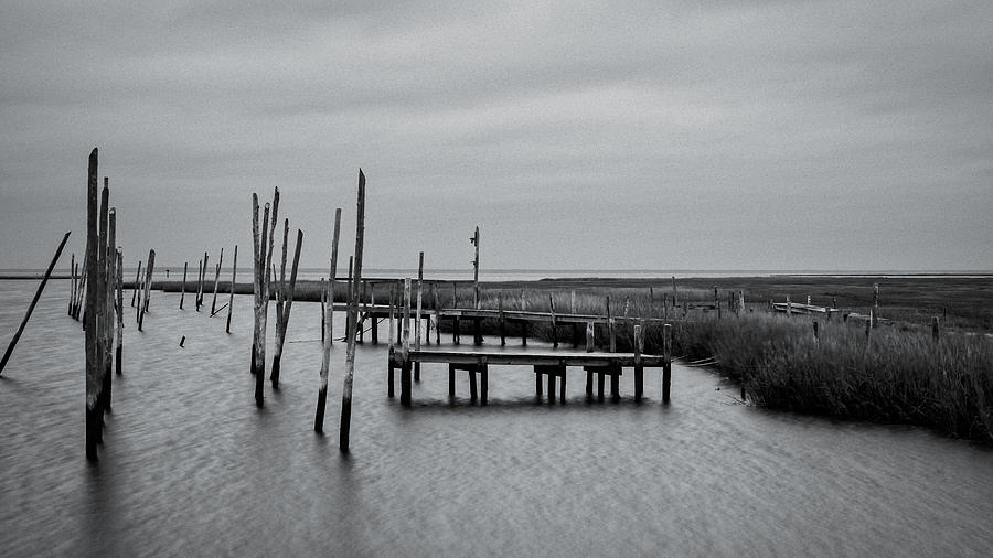 Old Dock by Shawn Colborn