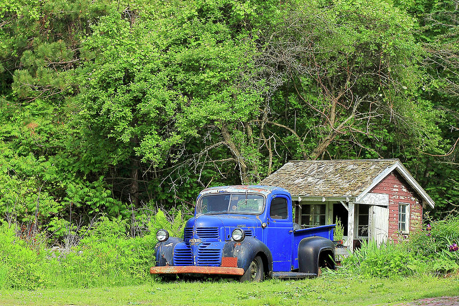1940's Photograph - Old Dodge Truck by Brian Pflanz