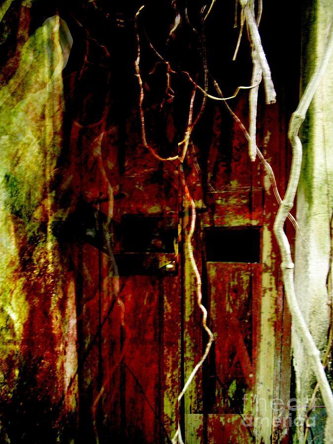 Ghost Digital Art - Old Door Set Four by Kathy Daxon