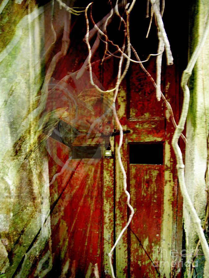 Ghost Digital Art - Old Door Set Three Something There by Kathy Daxon