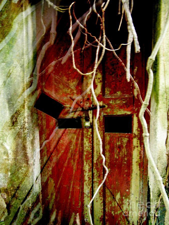 Haunted Digital Art - Old Door Set Two Haunted by Kathy Daxon