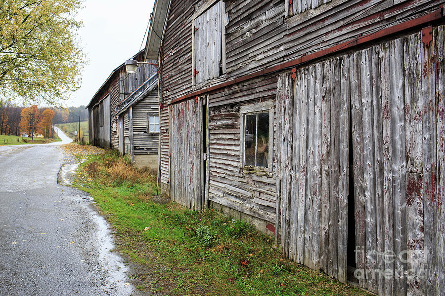 Leading Photograph - Old Farm Buildings Along The Road In Stowe Vermont by Edward Fielding