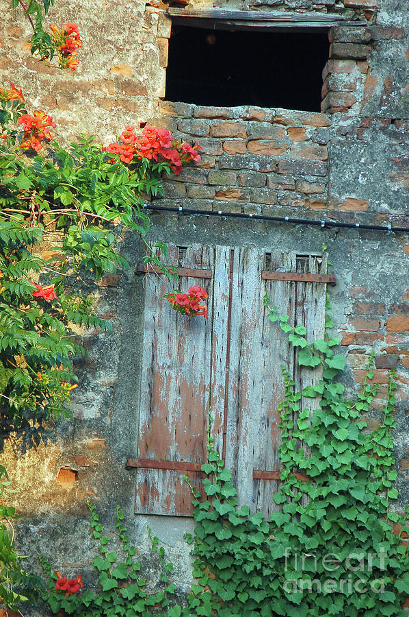 Old Farm Door by Frank Stallone