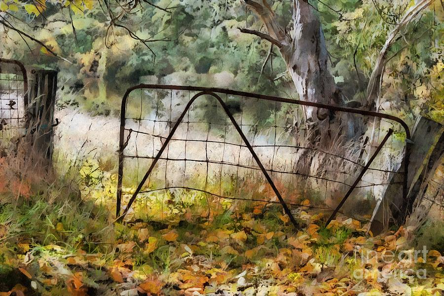 Old Farm Gate by Fran Woods