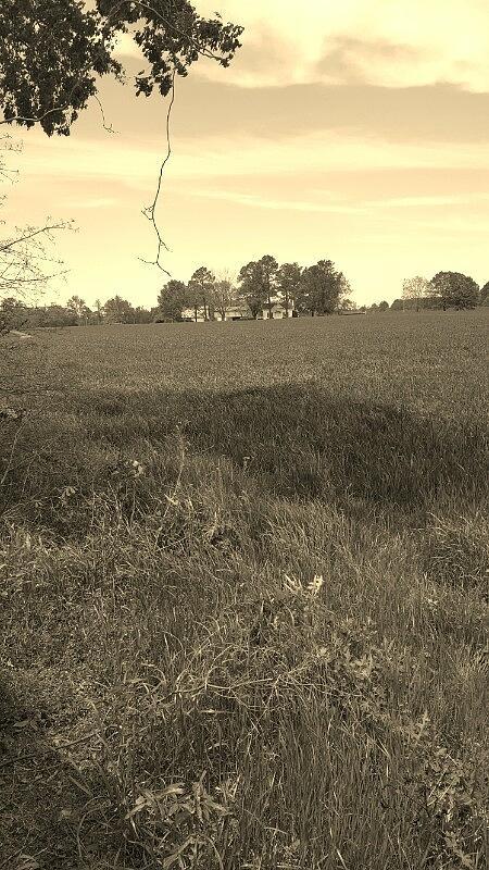 Farm Photograph - Old Farm by Jessi Baker