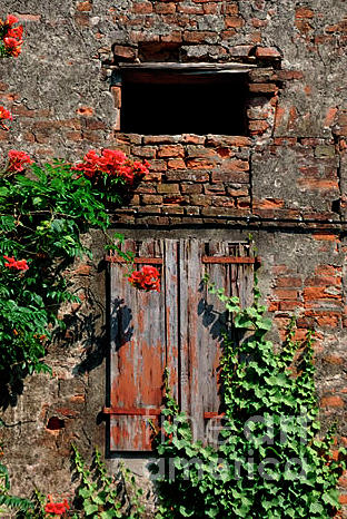 Old farm window by Frank Stallone