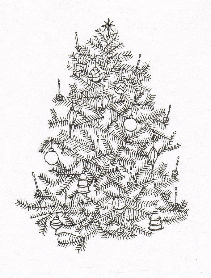 Old Fashion Christmas Tree Drawing By Deborah Wetschensky