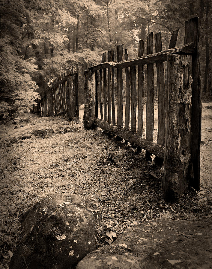 Old Fence by Larry Bohlin
