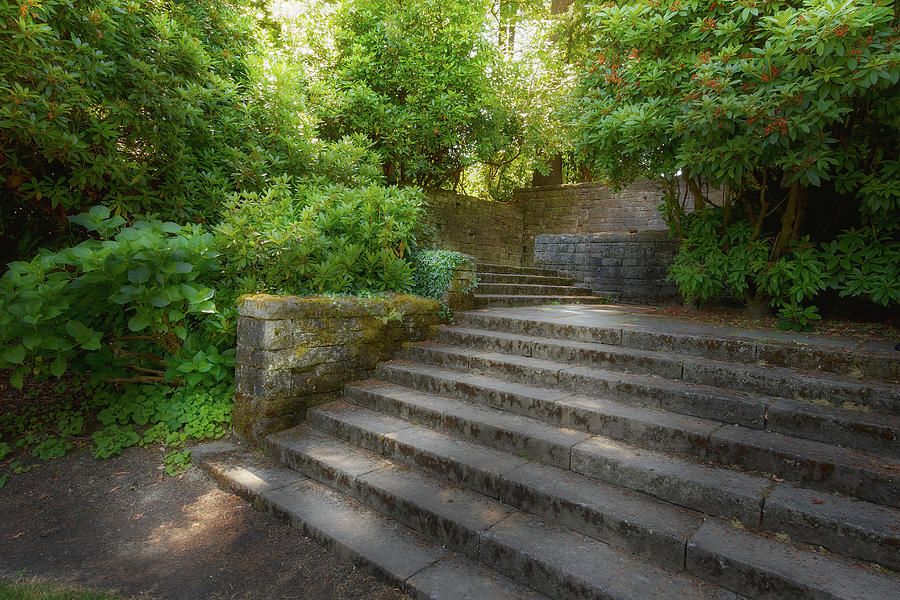 Garden Photograph - Old Garden With Stone Walls And Stair Steps by David Gn