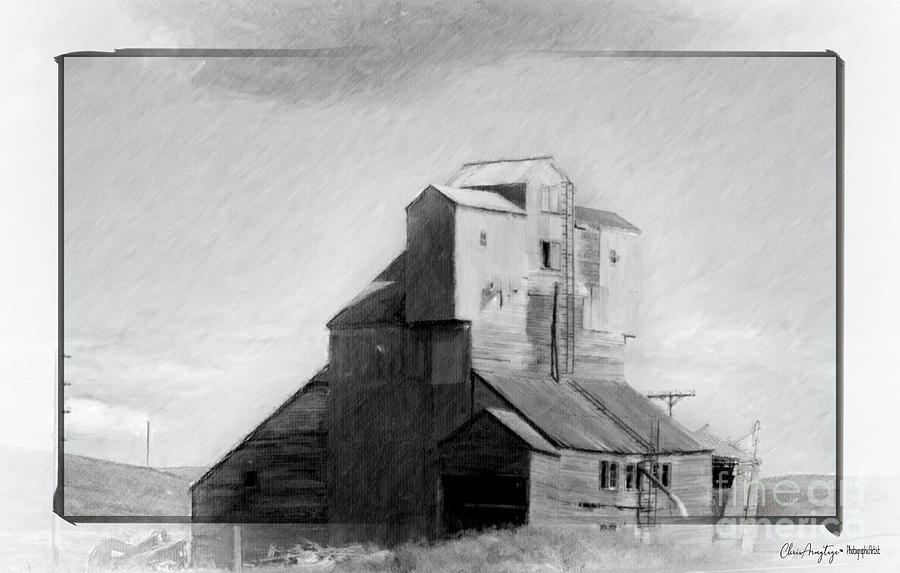 Grain Elevator Drawing - Old Grain Elevator by Chris Armytage