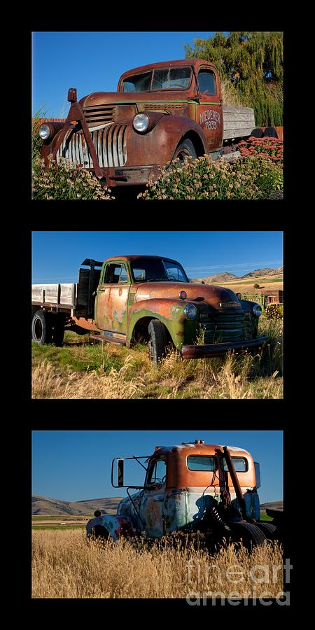 Triptych Photograph - Old Guys Trio 4 by Idaho Scenic Images Linda Lantzy