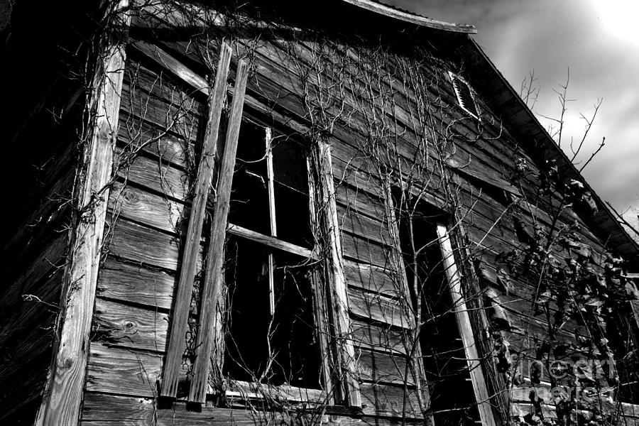Old House Photograph - Old House by Amanda Barcon