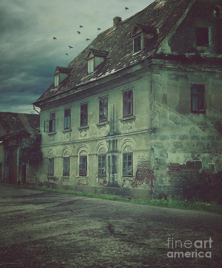 Bird Photograph - Old House by Mythja Photography