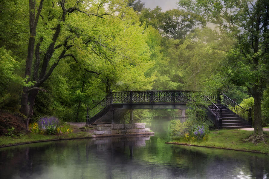 Old Iron Bridge by Robin-Lee Vieira