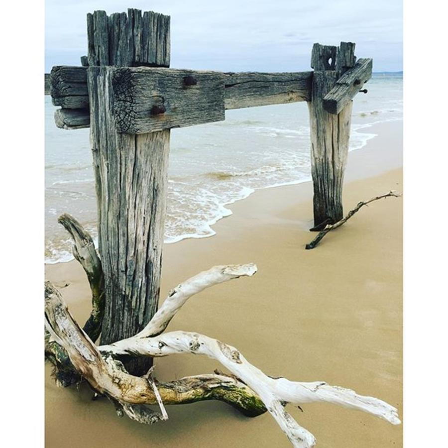 Natural Photograph - Old Jetty Point Nepean Victoria March by Paul Dal Sasso