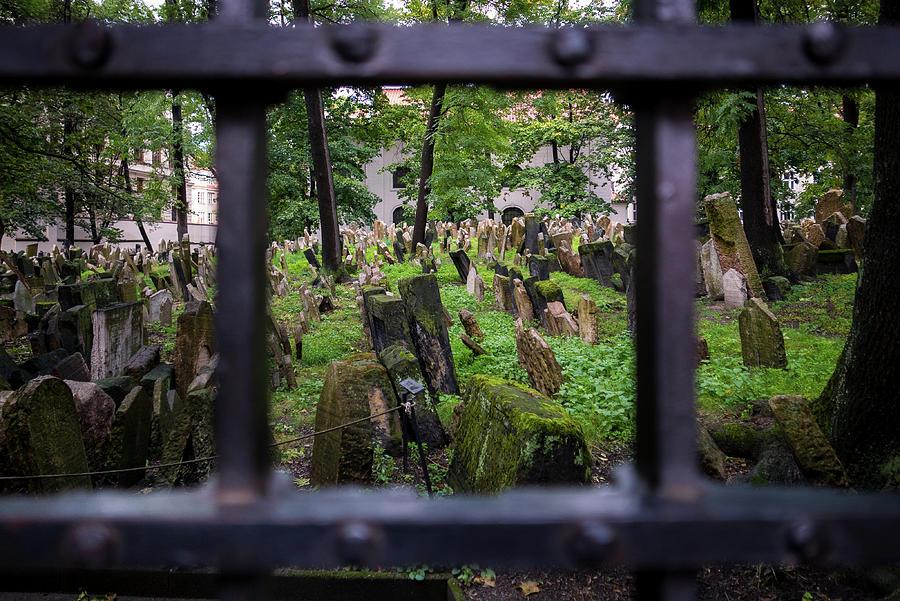 Old Jewish Cemetery I by Robert Davis