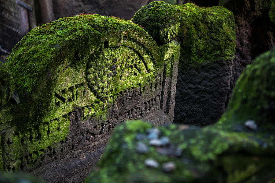 Old Jewish Cemetery II by Robert Davis