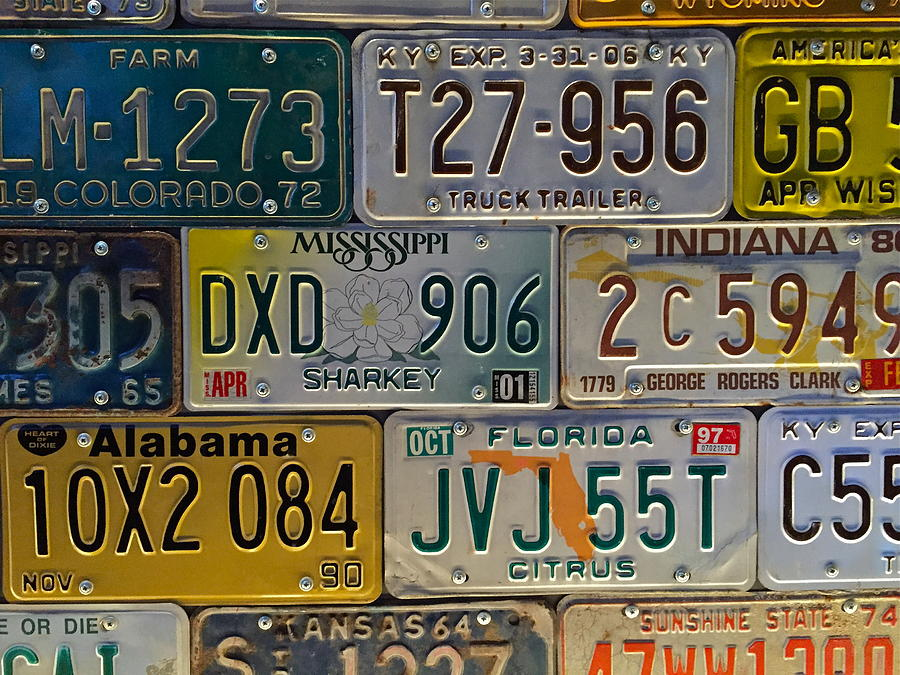 Old License Plate Art Photograph by Denise Mazzocco
