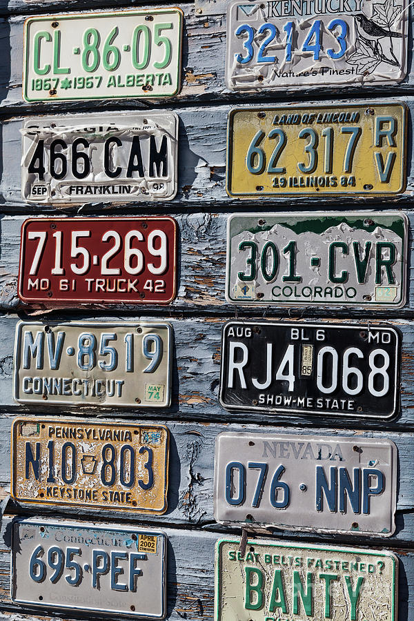 Old License Plates Photograph by Webb Canepa