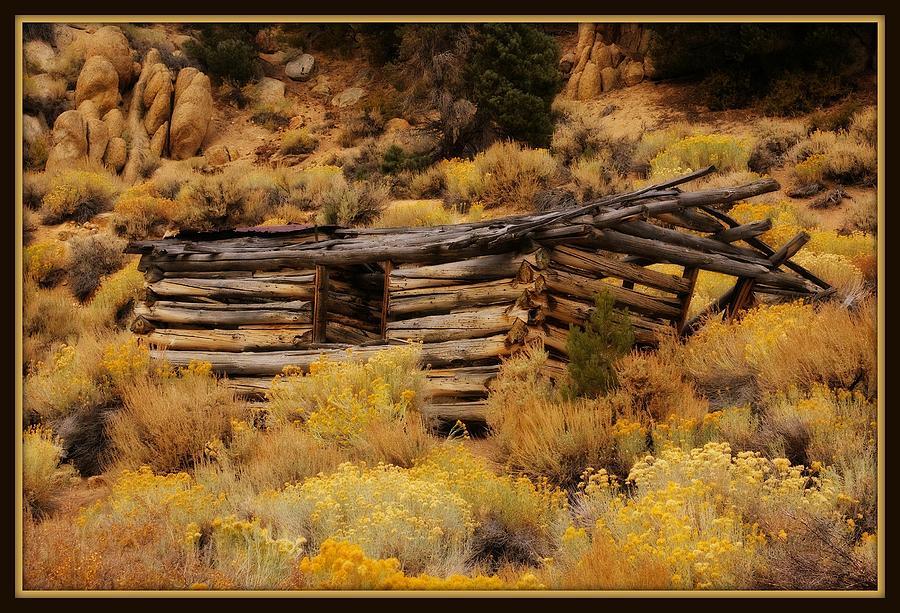 Old Log Cabin 3 by Sherri Meyer