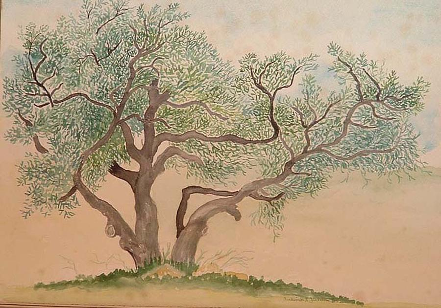 https://images.fineartamerica.com/images/artworkimages/mediumlarge/1/old-oak-tree-fred-jinkins.jpg