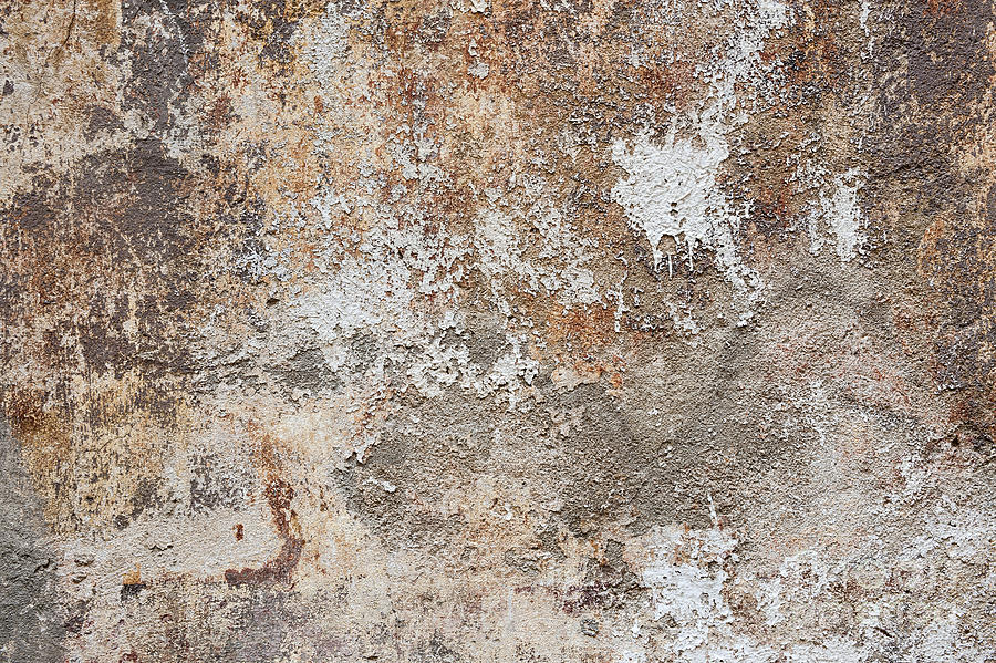 Wall Photograph - Old Painted Wall by Elena Elisseeva