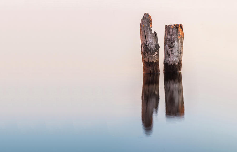 Current River Photograph - Old Piles by Linda Ryma