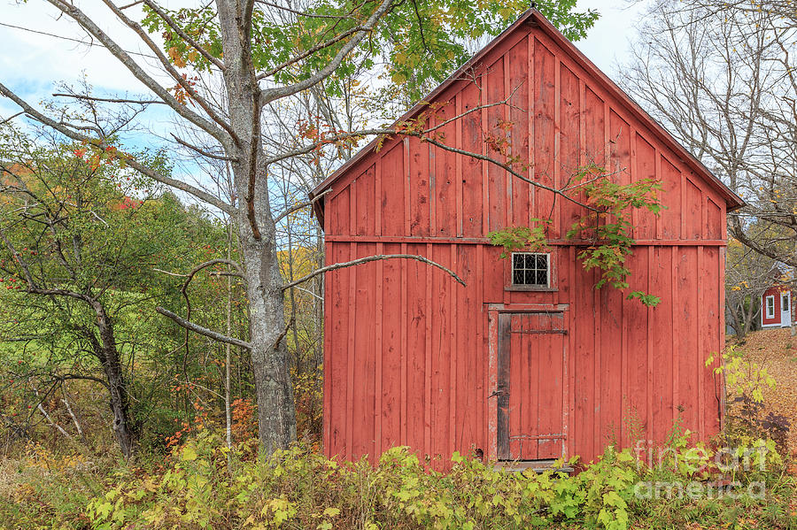 Old Red New England Barn Building Woodstock Vermont by Edward Fielding